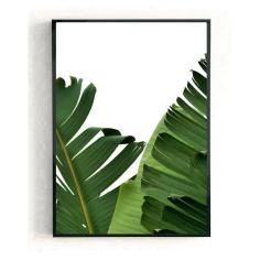 📷 https://www.thehouseoutfit.com/collections/wall-art/products/banana-leaves