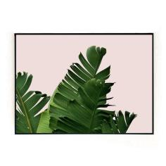 📷 https://www.thehouseoutfit.com/collections/wall-art/products/plant-on-pink