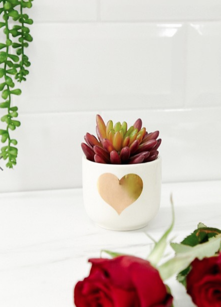 SASS & BELLE VALENTINES MINI PLANTER